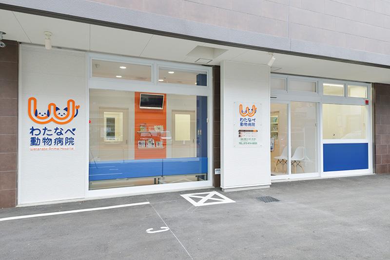 大阪府大東市の動物病院です。獣医師募集