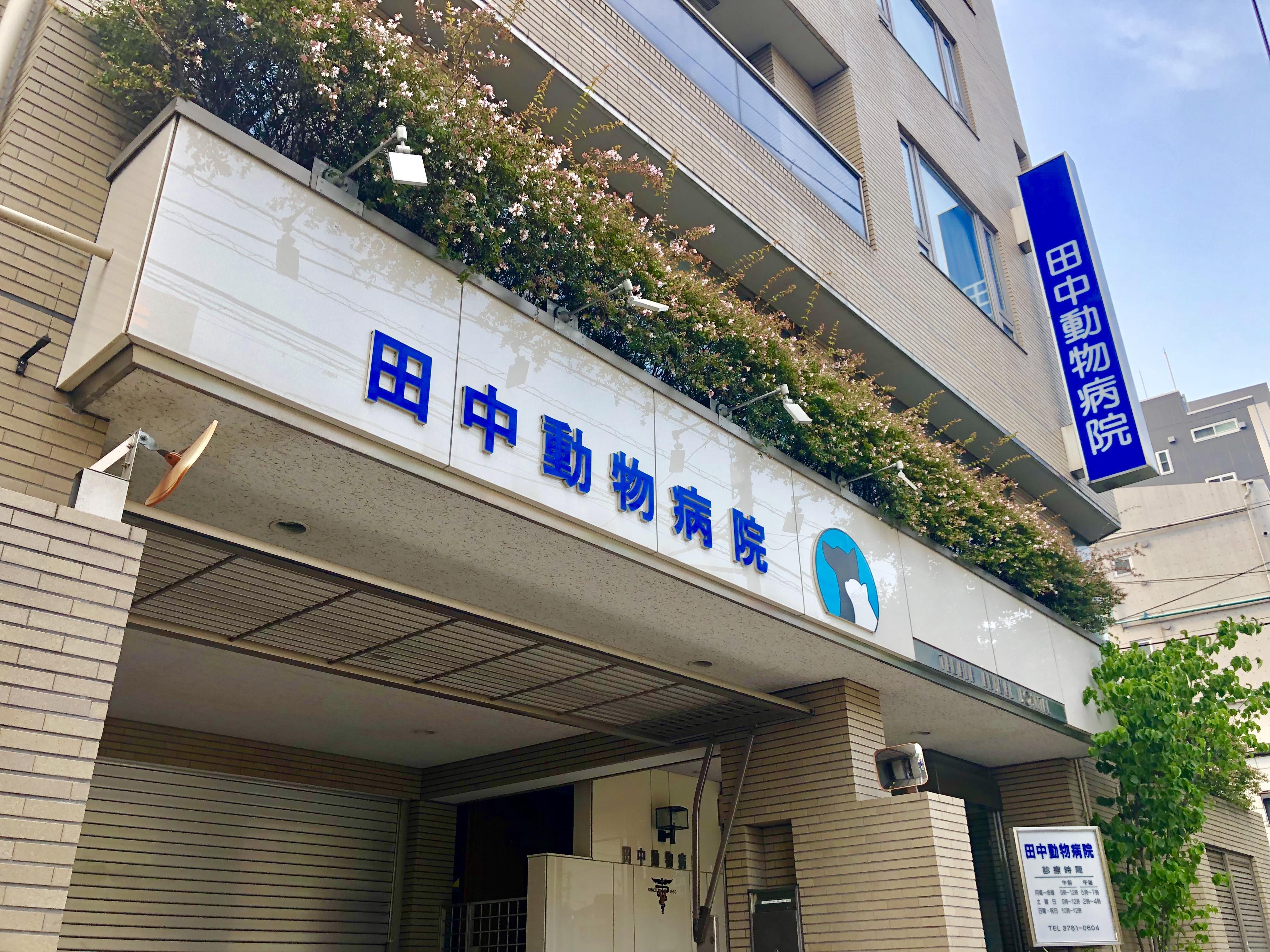 【既卒・新卒歓迎】品川区の動物病院でトリミング【正社員】