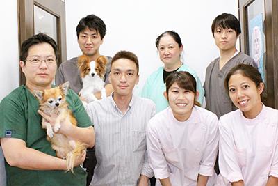 ☆11/29更新☆ 残業少なめ 動物看護師募集