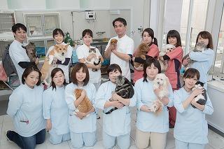 獣医師・トリマー・募集します。
