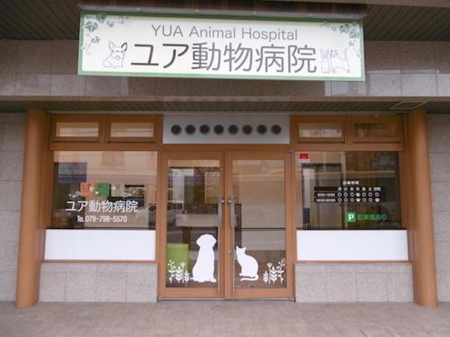 ユア動物病院