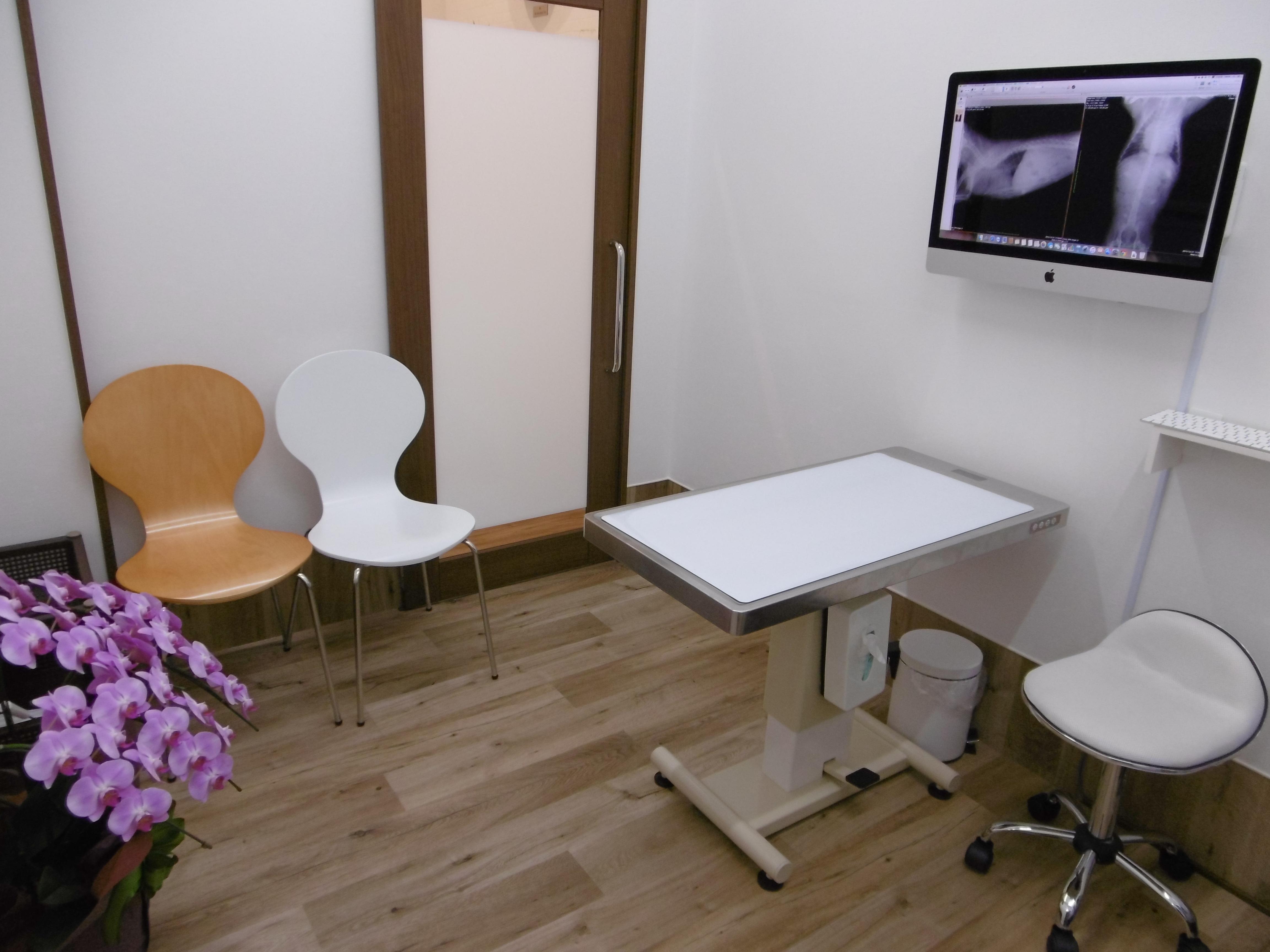 第一診察室です(主に犬の診察用です)