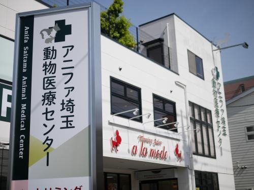 アニファ埼玉動物医療センター◇犬猫エキゾの診療行っています