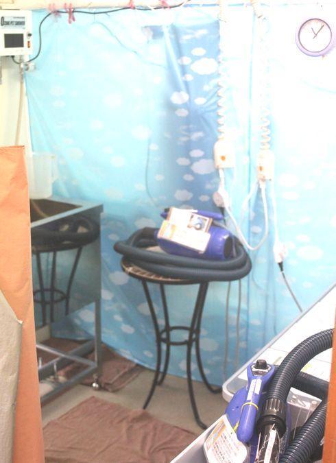 飼い主さんが自分でシャンプーするセルフシャンプー室があります。