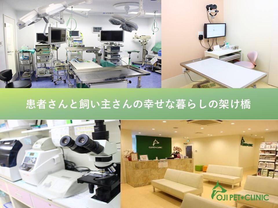 【獣医師】基礎から専門医療までしっかり学べる!