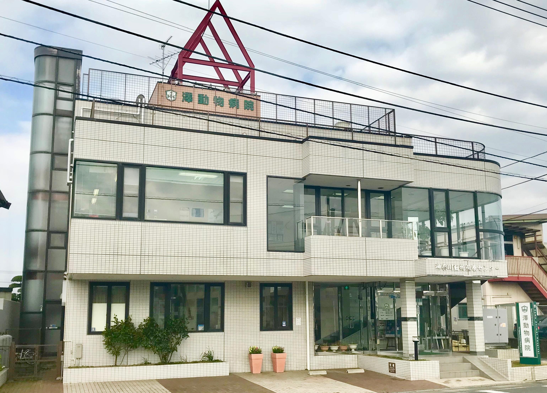 神奈川県座間市栗原中央 澤動物病院 トリマー募集中