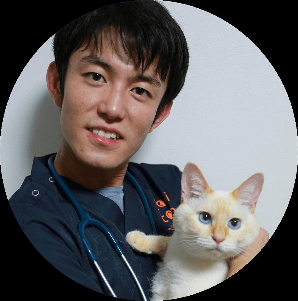 ねこ専門病院で勤務経験のある獣医師が活躍しています