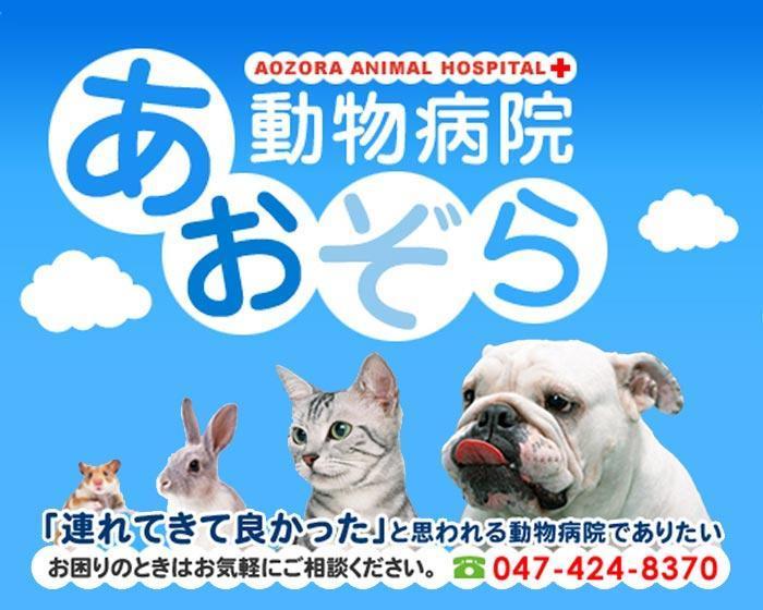 【経験者募集】千葉県船橋市で動物看護師さんを募集中