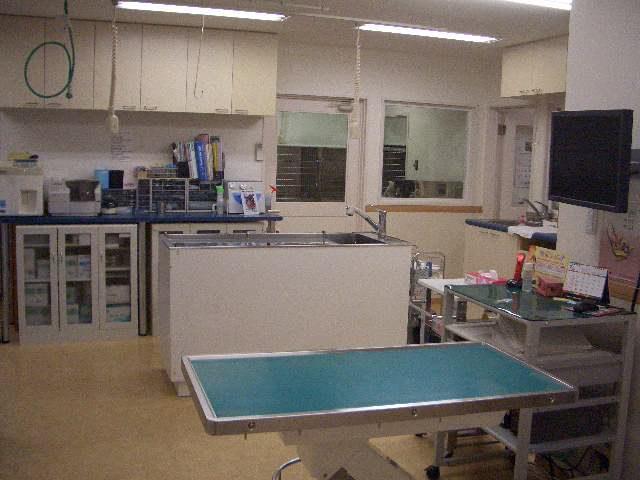 診察室、処置室
