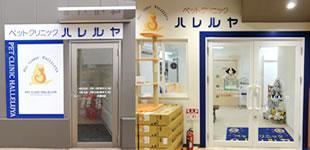 【獣医師正社員、パート】ペットクリニックハレルヤ新宮病院