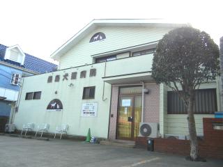 桑島犬猫病院 獣医師募集
