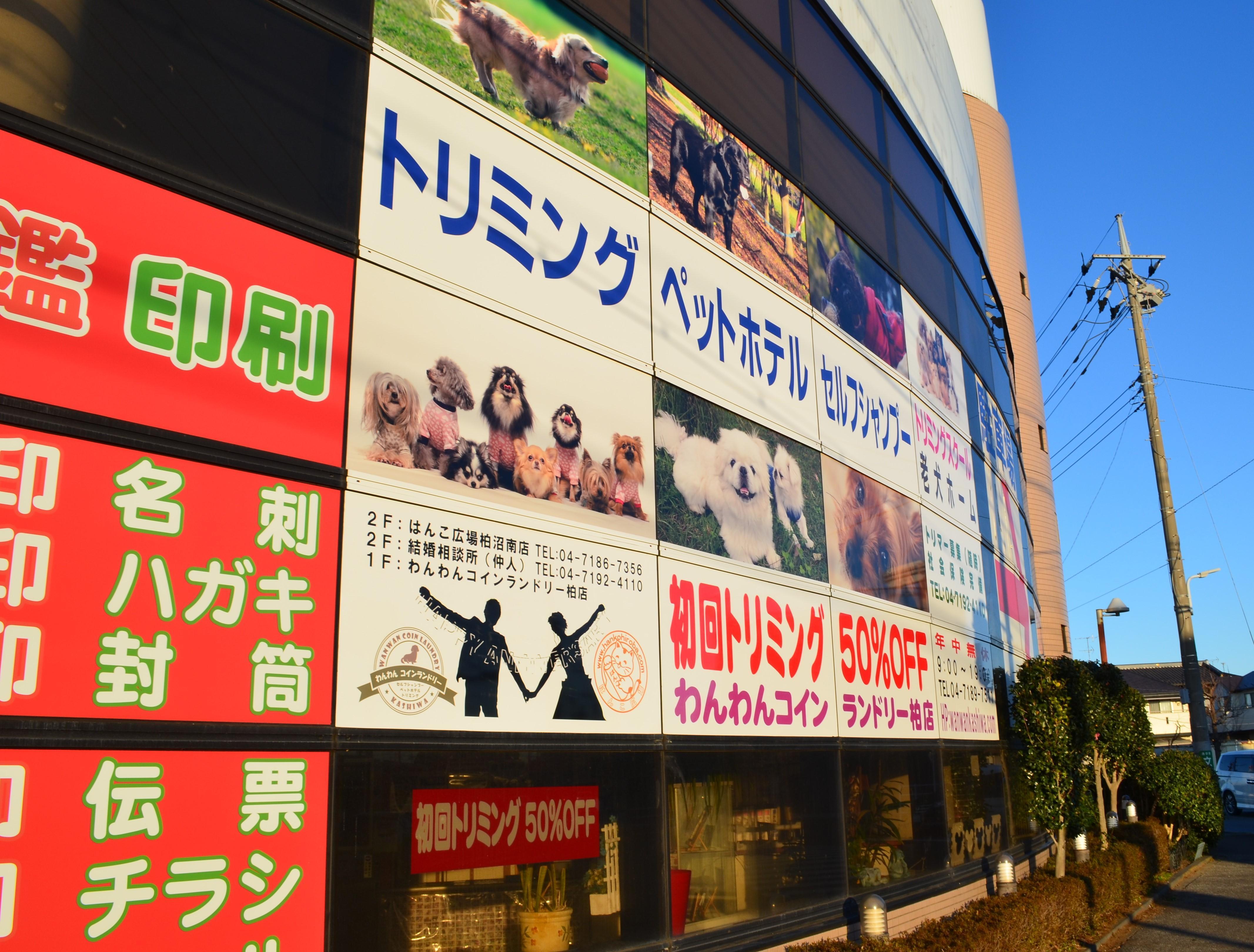 【残業ほぼなし!】犬のトリマー(千葉県柏市勤務)定年制度無!
