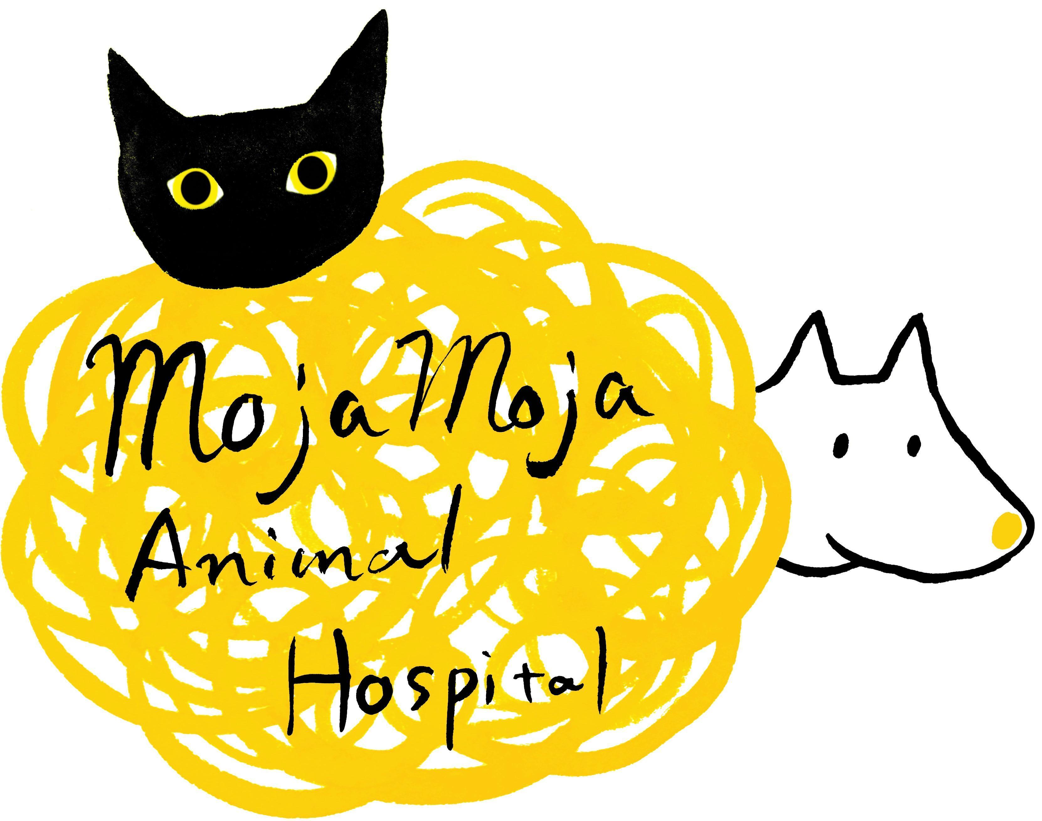 動物 病院 ドラセナ