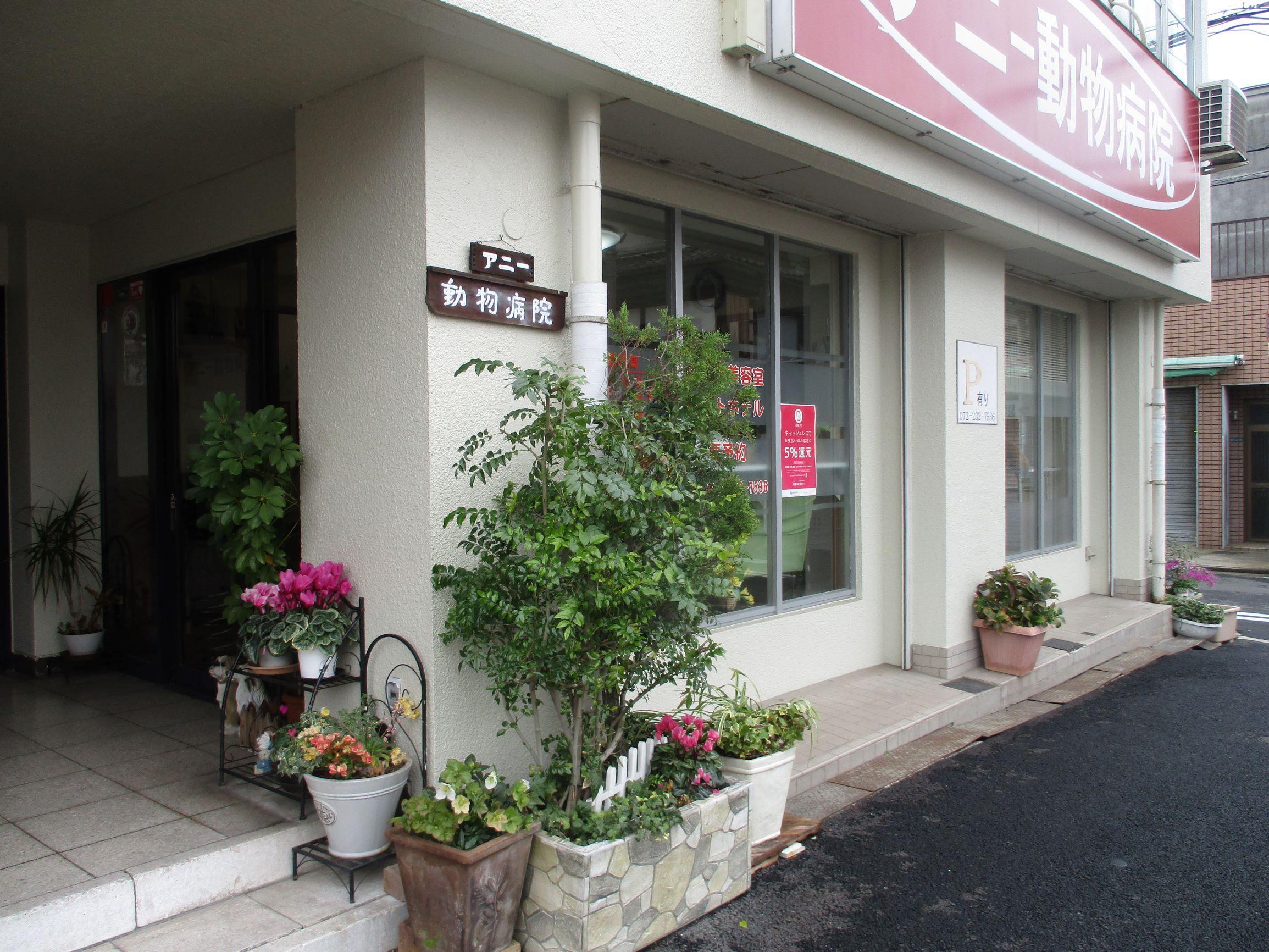 堺市でトリマー募集