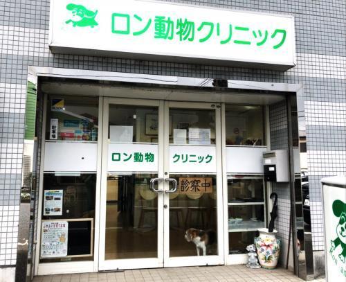 未経験OK!藤沢市で動物看護士として働きませんか