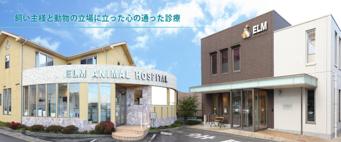 【社保完備】滋賀県のエルム動物病院 獣医師募集