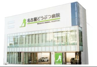 名古屋どうぶつ病院