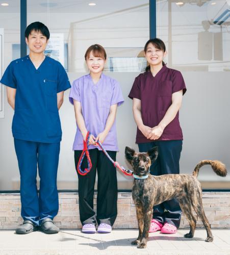 動物看護士大募集!2019年OPENの広くてキレイな医院!