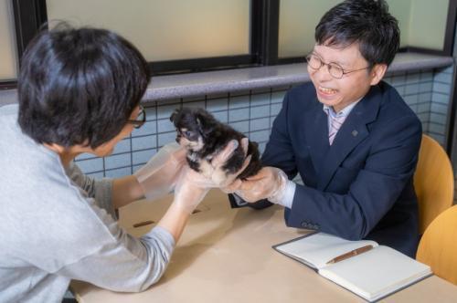 【正社員/福岡】子犬子猫のバイヤーの新しい仲間を募集中!