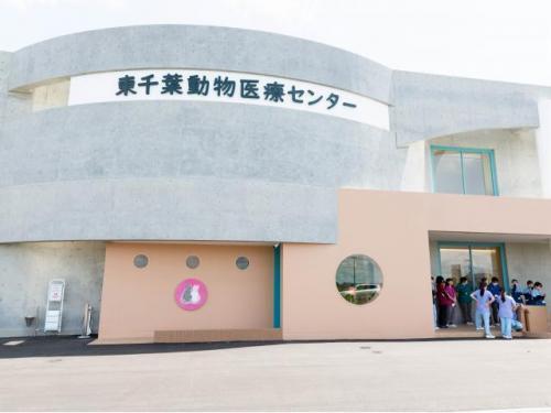 パート【経歴・学歴不問】千葉県東金市 動物病院看護助手募集!