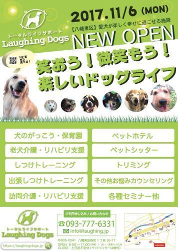 犬の保育園【トレーナー、トリマー】未経験でも可